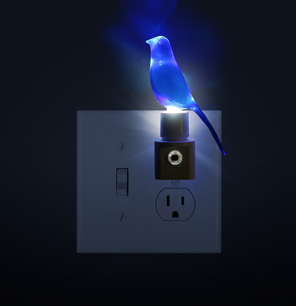 Blue Canary In The Outlet By The Lightswitch